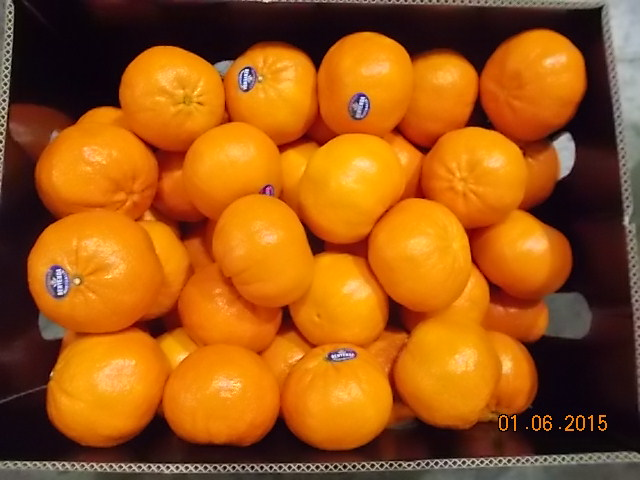 Pre-shipment Inspection of Mandarins